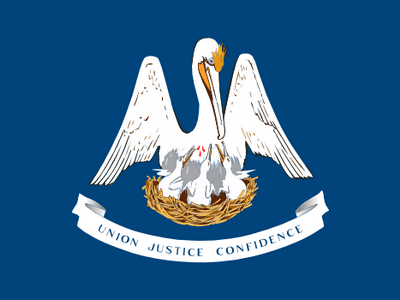 Divorce papers in louisiana filing for divorce in la in the state of louisiana the minimum cause for divorce may be the fact that the spouses do not live together for more than 180 days for couples who dont solutioingenieria Images